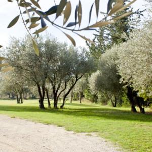 Un joli parc arboré près de Marseille