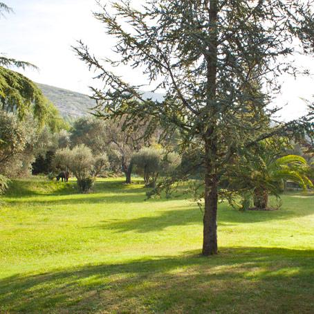 salle de réception avec parc près de Marseille